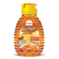 Bee Hives Honey Squeeze Bottle - 450gm