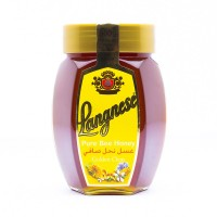 Langnese Honey - 500gm